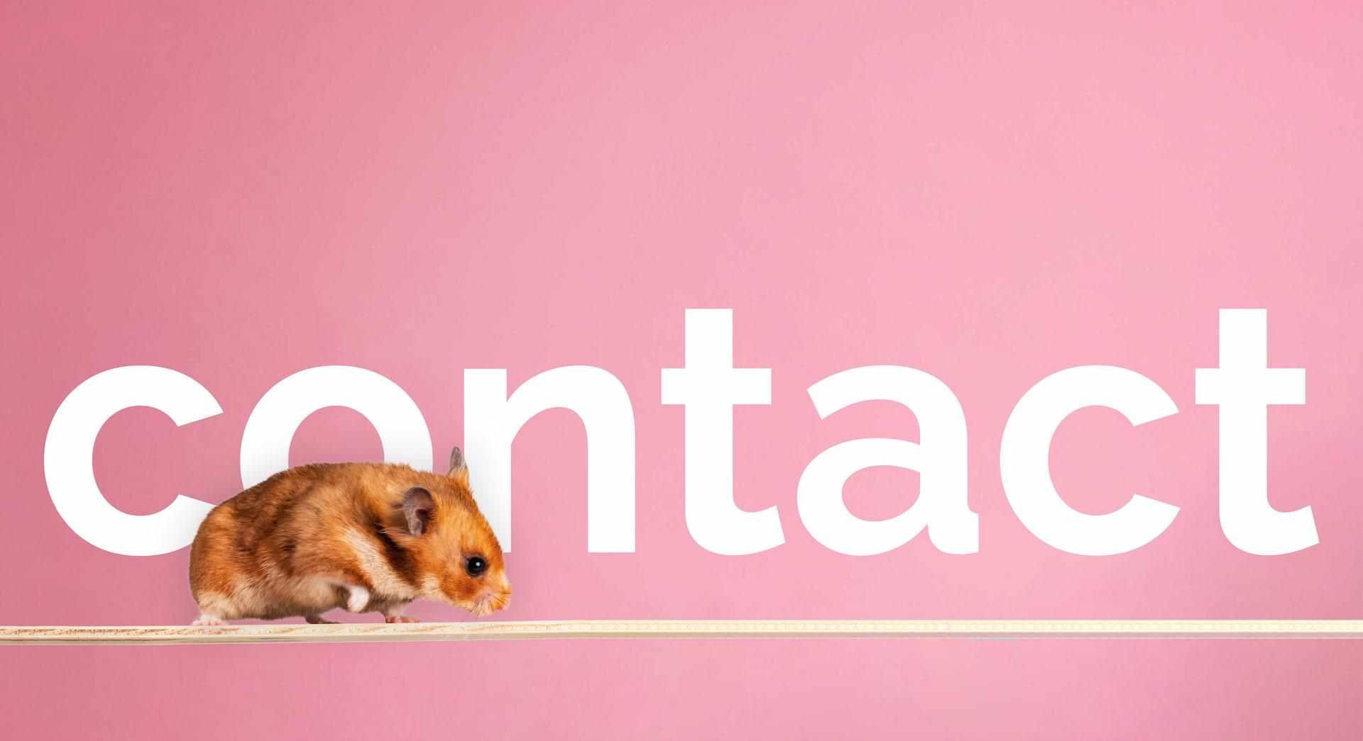 Contact Nature Nurture Pet Store