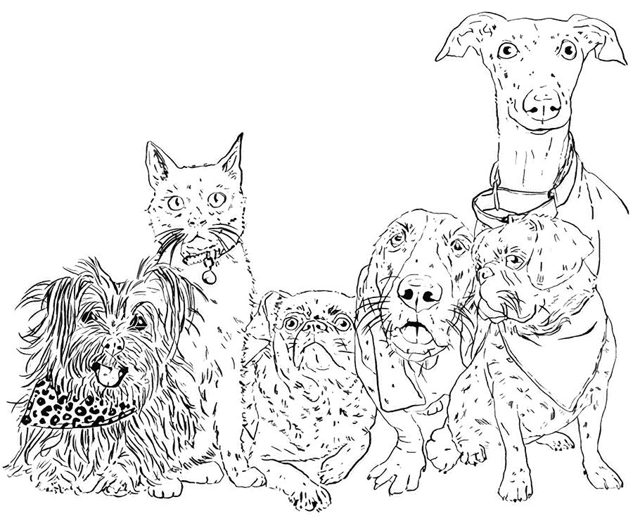 Nature & Nurture Pet Store illustration